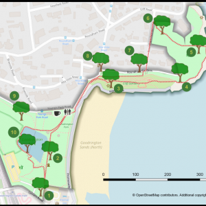 Torbay Tree Trails basemap from Open Street Map other data created by Neetmaps in QGIS