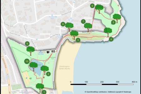 Torbay tree trails